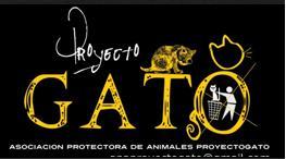 Protectora de animais